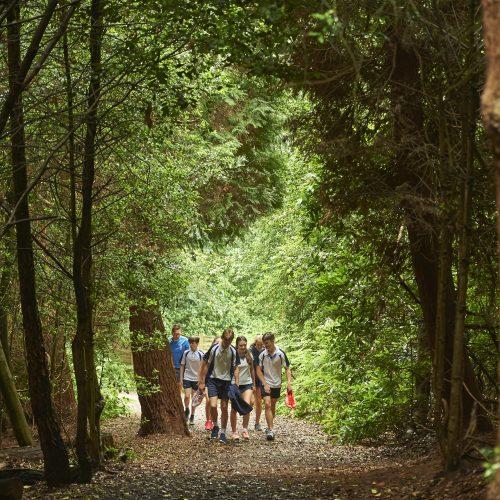 group of teenagers walking through woods